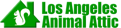 Los Angeles Animal Attic